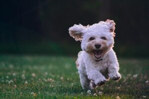 8 Ways To Get And Stay Happy