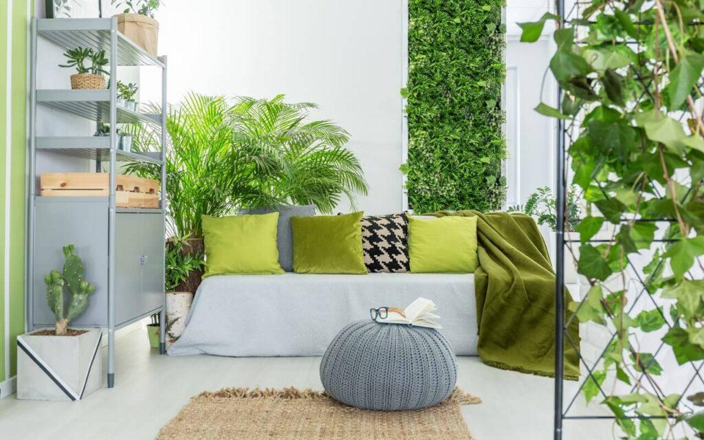 Greener Homes Decors